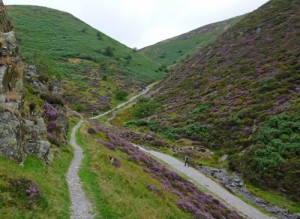 Exploring from Carding Mill Valley