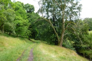 Riverside path, Ratlinghope