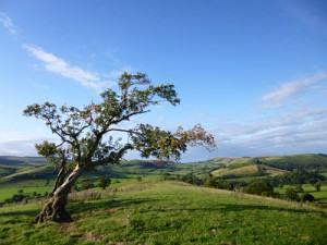The view from Adstone Hill